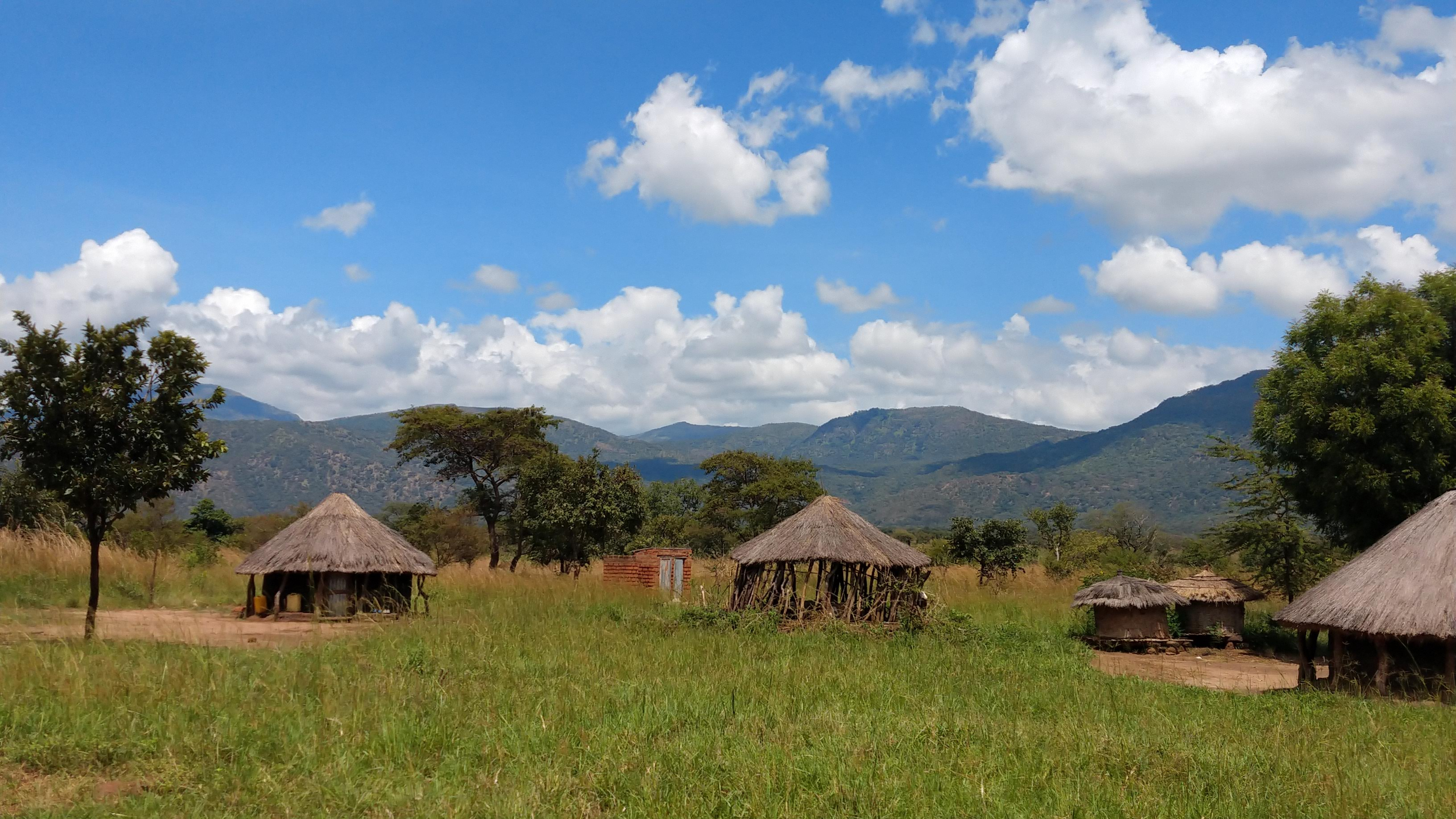 Landscape of North Uganda, huts, hills, green